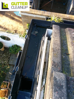 professional cleaning of rain gutters
